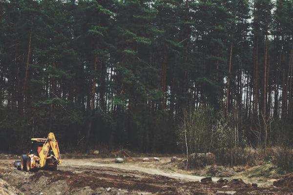 Fôret en destruction - Biodiversité | Collectif Eco-Solidaire Corée Taïwan