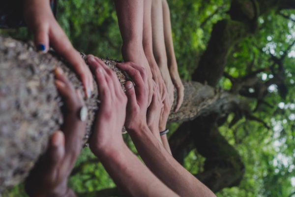 Mains sur un arbre | Engagez-vous | Collectif Eco-Solidaire Corée Taïwan